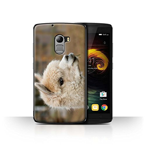 Stuff4 Phone Case for Lenovo Vibe K4 Note South America Alpaca Cute/Close Up Transparent Clear Ultra Slim Thin Hard Back Cover