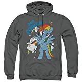My Little Pony Tv 20 Percent Cooler Unisex Adult Pull-Over Hoodie, Charcoal, 3X-Large