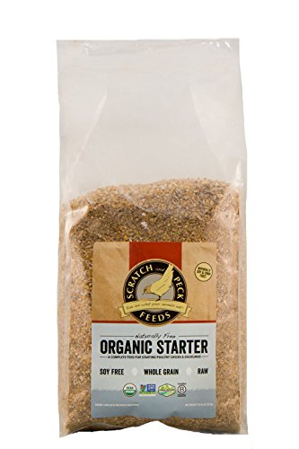 Naturally Free Organic Starter Feed for Chickens and Ducks - 10-lbs - Non-GMO Project Verified, Soy Free and Corn Free - Scratch and Peck Feeds