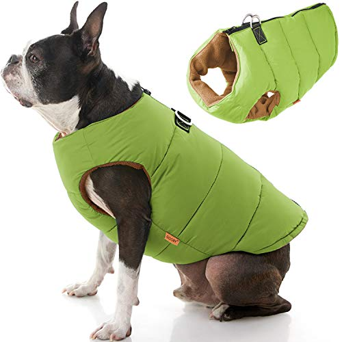 Gooby Padded Dog Vest - Solid Green, Medium - Zip Up Dog Jacket Coat with D Ring Leash - Small Dog Sweater with Zipper Closure - Dog Clothes for Small Dogs Girl or Boy for Indoor and Outdoor Use