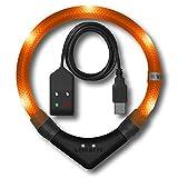 LEUCHTIE® Leuchthalsband Pro Easy Charge Sunset orange Größe 50 I LED Halsband für Hunde I USB aufladbar I wasserdicht I extrem hell