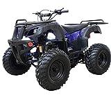 X-PRO ATV Quad 4 Wheelers Utility ATV Full Size ATV Quad Adult ATVs Big Youth ATVs for Sale(Blue)