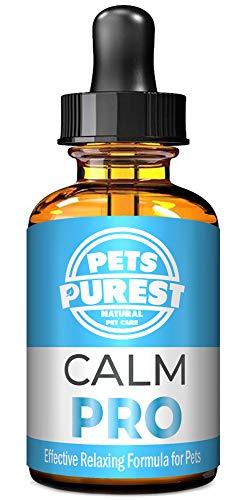 Pets Purest 100% Natuurlijk Kalm PRO Kalmerende hulp Supplement voor Honden Katten Paarden Konijnen Vogels Huisdieren - Aids Angst & Stress als u alleen thuis bent, Agressie, Luide geluiden, Vuurwerk & Kennels (50 ml)
