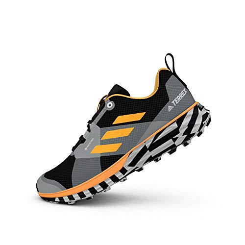 adidas Terrex Two GTX, Zapatillas de Running Hombre, Dorsol/NEGBÁS/FTWBLA, 45 1/3 EU