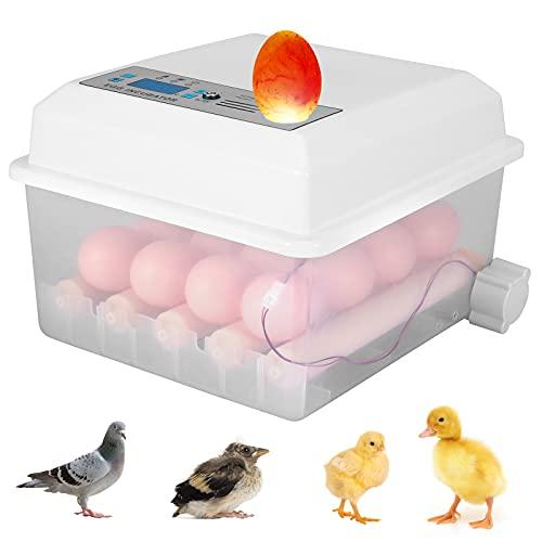 ETE ETMATE Incubadora de Huevos 16 Huevos Digital Egg Hatcher Home Egg Hatcher Incubadora automática con Control de Temperatura Turner para incubar Huevos de gallina de codorniz y Pavo