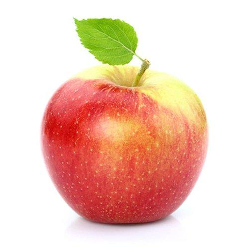 Obst & Gemüse Bio Apfel Santana (1 x 1000 gr)