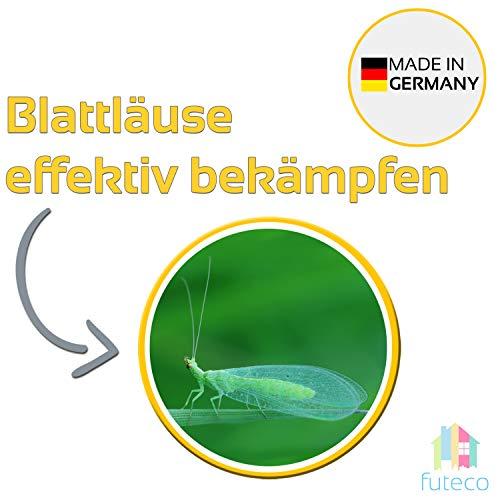 Futeco® – Blattläuse, Thrips & vieles mehr bekämpfen mit Florfliegenlarven – für 10m² Fläche – zum einfachen ausstreuen – 100% Biologisch, Chemiefrei & Natürlich – Made in Germany