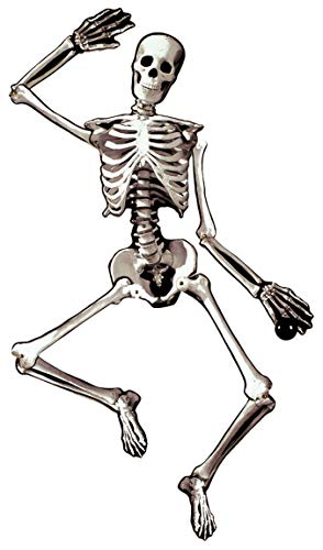 Amscan Halloween Decoration | Jointed Skeleton Cutout