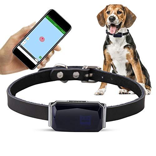 yingwang Mascotas Rastreador GPS Inteligente IP67 Impermeable Ajustable Práctico Collar de Seguimiento de Gato para Perros Localizador de Seguimiento de Perro Anti-perdido-Azul