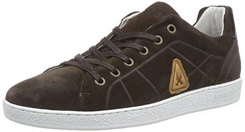Gaastra HOUNDS SUE M, Herren Sneakers, Braun (2222), 43 EU
