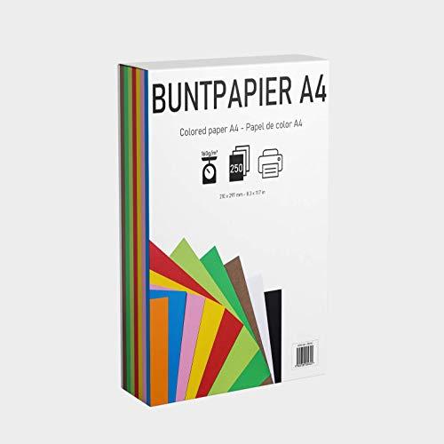 EAF supplies 250 Blatt buntes DIN-A4 Tonpapier, Set aus 10 Farben in 160g/m², Tonzeichenpapier bunt zum Zeichnen, Drucken, Basteln, DIY-Bedarf, Grußkarten und vielem mehr