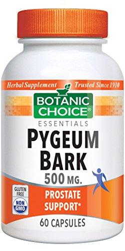 Botanic Choice Pygeum Bark 500 mg, 60 Capsules
