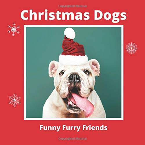 Christmas Dogs Funny Furry Friends: Funny Dog Pictures for Kids (Picture Books for Babies, Toddlers & Kids of All Ages, Band 2)