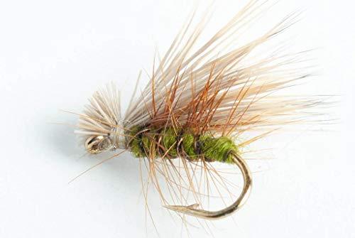 Elk Hair Caddis Dry Fly - Tan, Olive or Black - 6 Pack (Olive, 16)
