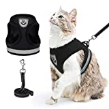 Best Cat Harnesses - Escape Proof Cat Harness and Leash - Adjustable Review