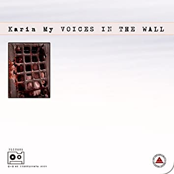 Voice in the wall