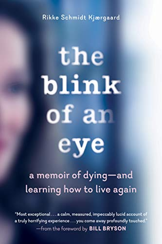Image of The Blink of an Eye: A Memoir of Dying―and Learning How to Live Again