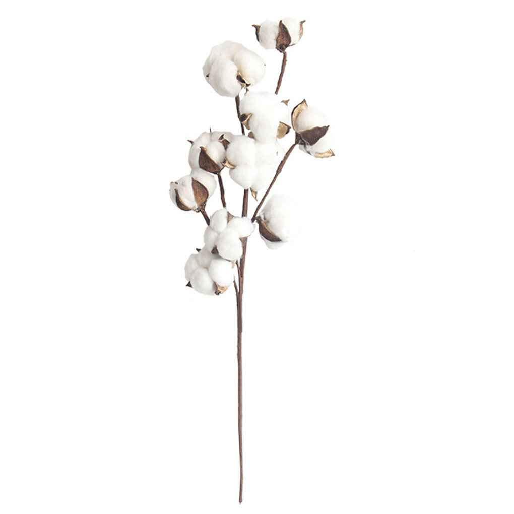 LafyHo 10 Jefes de Gossypium pétalos de Flores secas Naturales ...