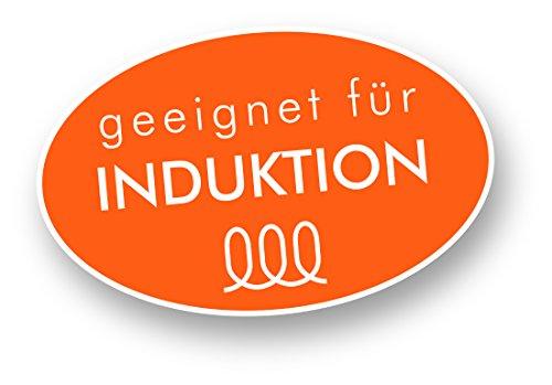 Rohe Germany 213101-22 Ravenna - Olla Licuadora con Tapa de ...