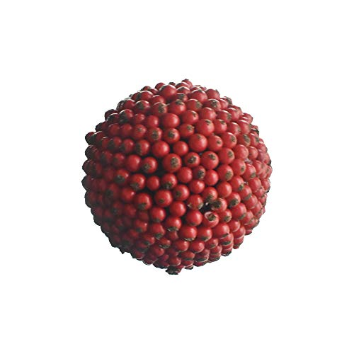 Homeford Artificial Berry Ball Christmas Ornament, Red, 3-3/4-Inch