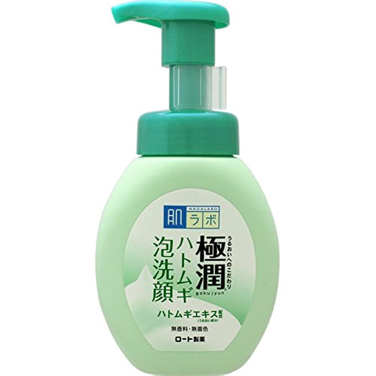 蒸発瞑想する横向き肌ラボ 極潤 毛穴洗浄 大人ニキビ予防 ハトムギ泡洗顔 160mL