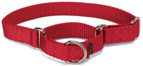 PetSafe Martingale Hundehalsband, Alternative zum Choke-Halsband, MEDIUM (Nylon Width 1