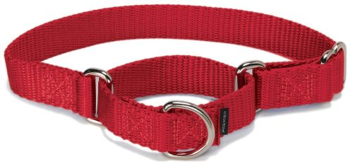 PetSafe Martingale Hundehalsband, Alternative zum Choke-Halsband, MEDIUM (Nylon Width 1