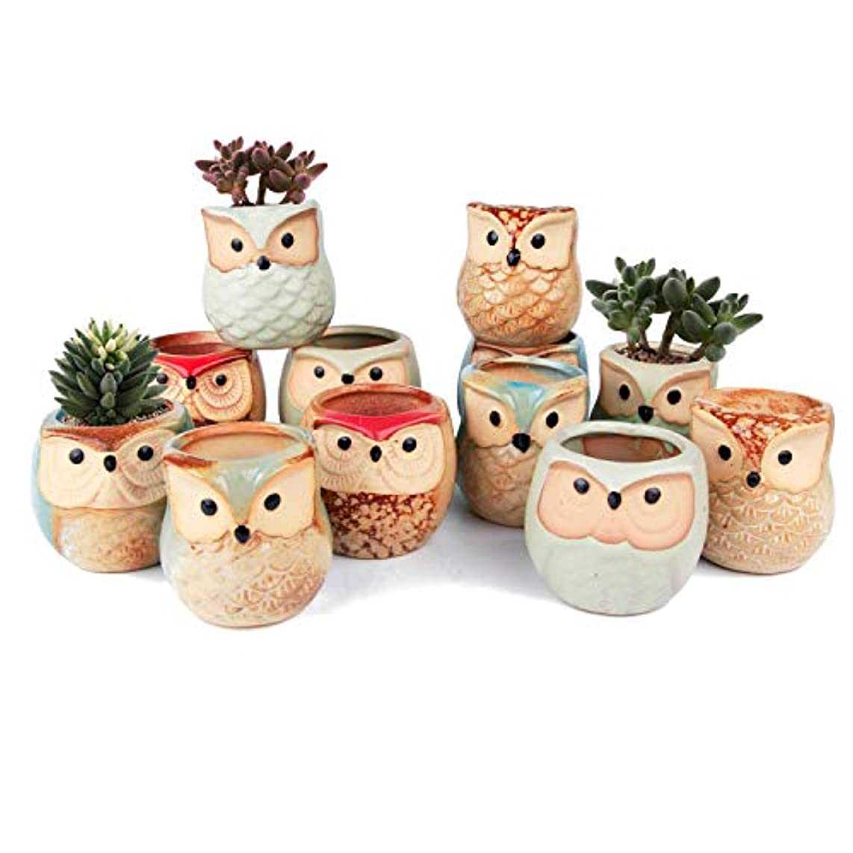 T4U Ceramic Succulent Pots Mini Size Flowing Glazed Planter Set of 12, Cute Owl Bonsai Pots Home Office Decoration Desktop Windowsill Gift for Baby Shower Birthday