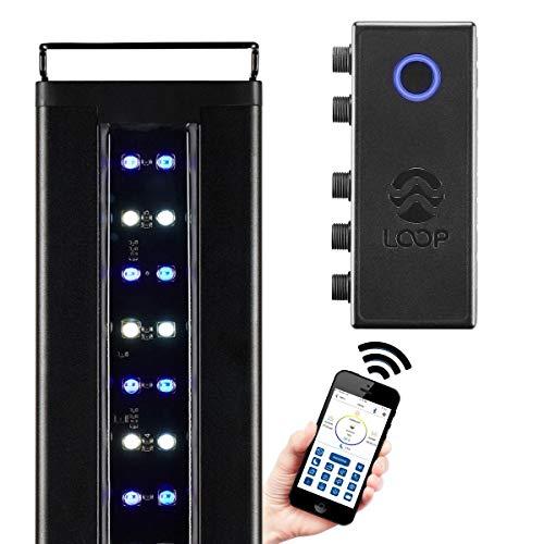 "CURRENT USA Orbit Marine IC LED Saltwater Reef Aquarium Light | with Wireless Lighting & Wave Pump Control | Loop App - Bluetooth | Fits Fish Aquariums 48""-60"""