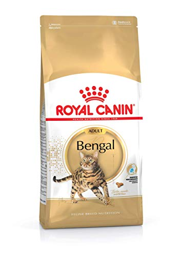 ROYAL CANIN Bengal Adult, 1er Pack (1 x 10 kg)