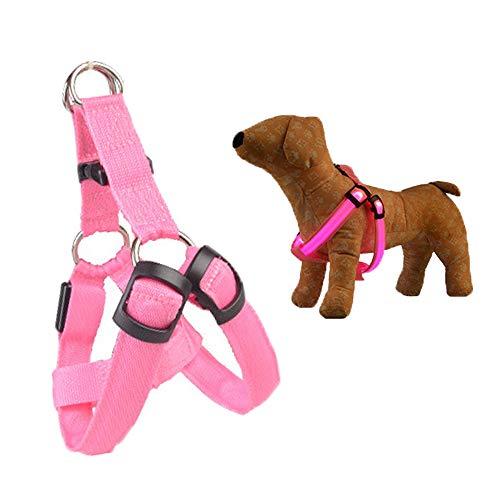 Collares LED para Perros - Collar para Mascotas de 3 Modos - Correa de Collar con luz Recargable por USB, Chaleco LED para Perros, Arnés LED para Perros, Correas para el Pecho, Perro Gato Unisex