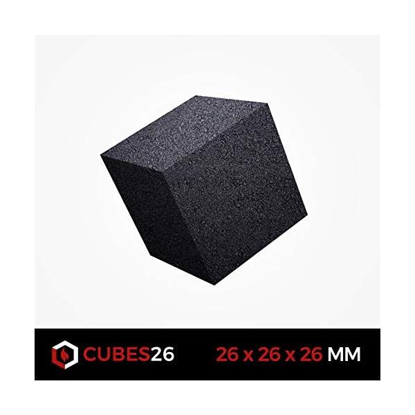 BLACKCOCO's – 1KG Carbón Natural de Coco Premium Cachimba y BBQ – Briquetas de Carbón de Coco de Alta Calidad Shisha y…