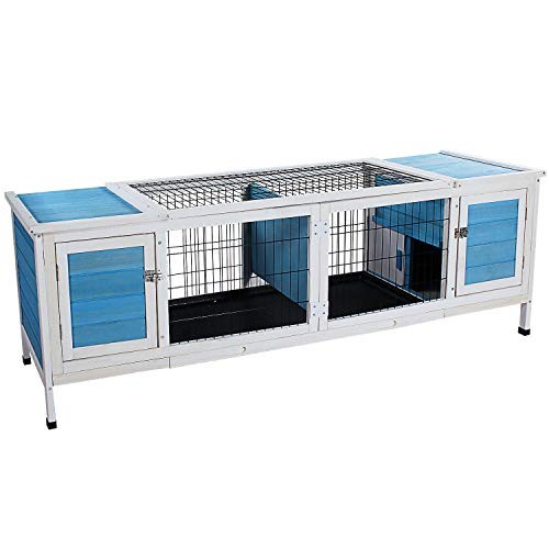 Rabbit Dual Use Hutch