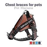 Verstellbar Generisches No-Pull Gepolsterte Hundegeschirre Verstellbare Reflektierende Sicherheitsgurte Für Welpen Aus Nylon Für Kleine, Mittelgroße, Große Hunde Pitbull Xs-L, Blau, Xs-Brust 39-44 cm