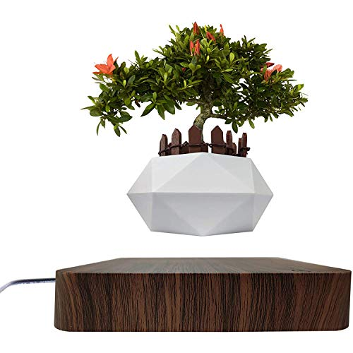 Jasis Woo Levitating Air Bonsai Plant Stand Rotation Planters for Room Decor, Magnetic Suspension Floating Pot with Same Color Wooden Fence (Dark Wood)