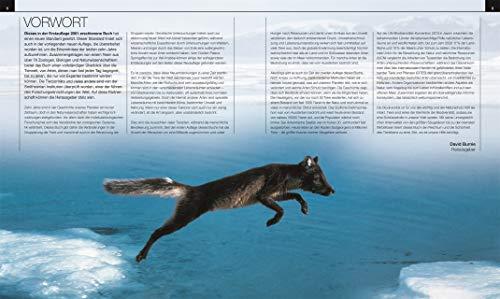 Tiere: Die große Bild-Enzyklopädie mit über 2.000 Arten - 10