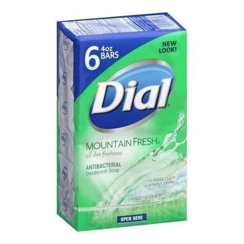 dial mountain fresh bar soap - 2