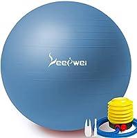 LEEPWEI バランスボール ヨガボール 空気入れ ボール ピラティスボール 厚い 環境にやさしい ジムボール エクササイズボール アンチバースト 耐荷重300kg 筋トレストレッチ ダイエット ヨガ 椅子 45cm/55cm/65cm/75㎝ ポンプ付 (M(48-55cm) 高さ150-165cmに適用, ブルー)