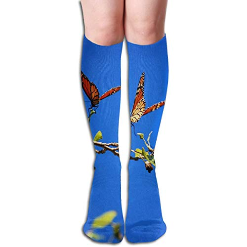 Kaswtrb Calcetines Pintura al óleo Árbol Corazón Gran calcetín de Regalo para Mujer Liquidación para niñas socks7079