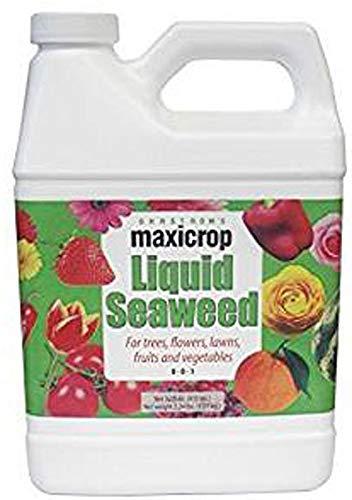Fertilizer, Liquid Seaweed, 0-0-1, Qt