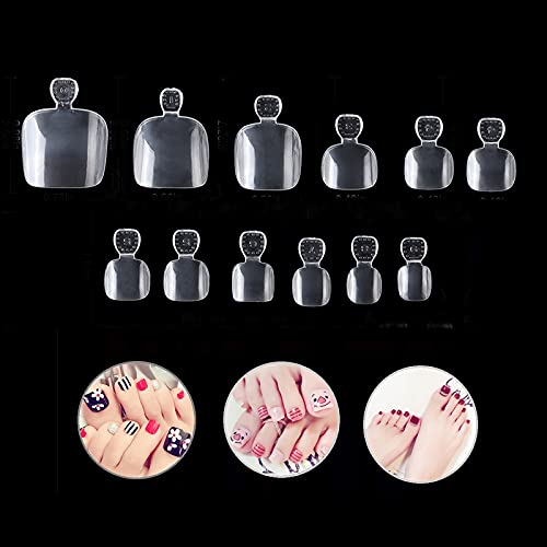 Vcedas 600 Pcs False Toenails Full Cover Artificial French Acrylic Toenails 12 Sizes for Nail Salons and DIY Nail Art (Clear)