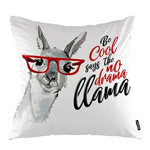 No drama llama pillow case