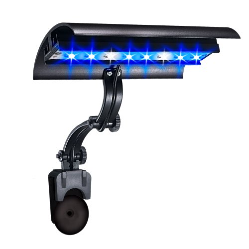 Wave-point 6-Inch 8-Watt Super Blue and Daylight Micro Sun LED High Output Clamp Light
