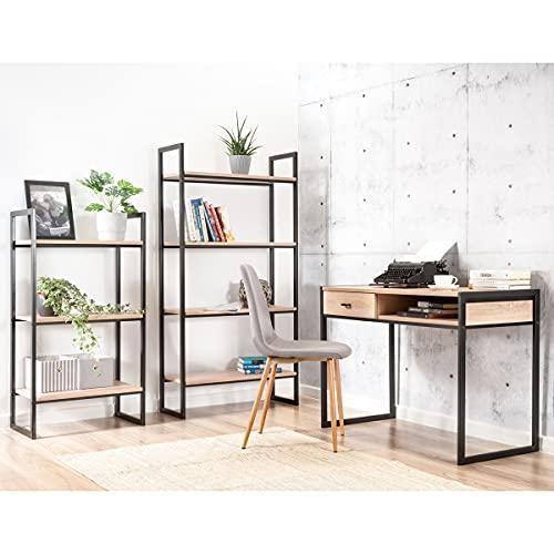 Lelu Design ORINOKO - Juego de escritorio y estantería, juego de muebles de oficina, estilo industrial, escritorio con dos estantes, escritorio con marco de metal pulverizado, mesa de ordenador