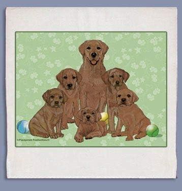 Ranking TOP10 Animal Theme Gifts Max 88% OFF Labrador Chocolate Dish Towel