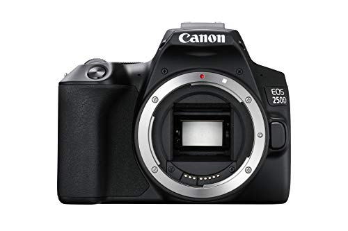 Canon EOS 250D Digitale Spiegelreflexkamera Gehäuse Body (24, 1 Megapixel, 7, 7 cm (3 Zoll) Vari-Angle Display, APS-C-Sensor, Dual Pixel CMOS AF, 4K, Full-HD, DIGIC 8, WLAN, Bluetooth) schwarz