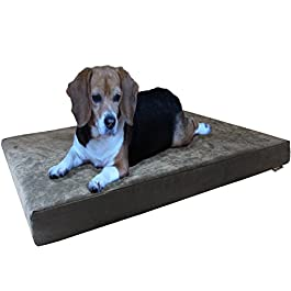 Dogbed4less Premium Orthopedic Memory Foam Dog Bed | Waterproof Liner, Washable Durable Canvas Cover and Bonus 2nd External Case, 7 Sizes