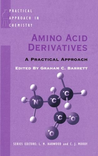 Amino Acid Derivatives: A Practical Approach (Practical Approach in Chemistry Series)