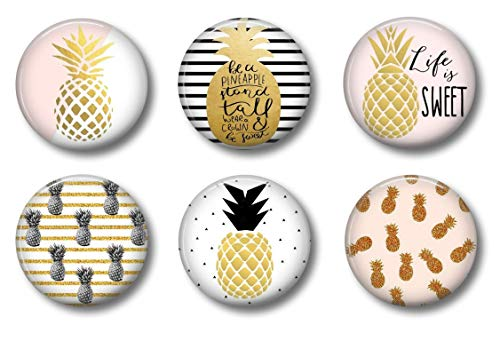 Top pineapple magnet for 2021