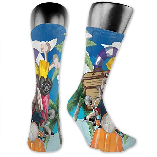 Socks Cute Funny For Summer,Puppy In Tropical Island With Palm Trees On A Motorbike Travel Holiday Theme,Running Outdoor Recreation,Trainer Socks for Men and Women